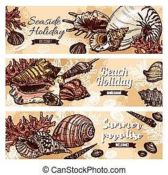 coraux, coquilles, été, plage, mer