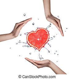 corazón, agua, toronja, salpicadura, manos humanas, blanco