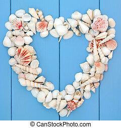 corazón, conchas marinas