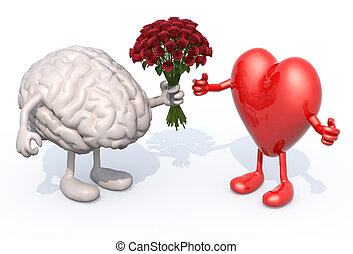 corazón, ella, rosas, ramo, cerebro, manos