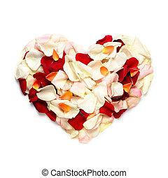 corazón, en, blossom.