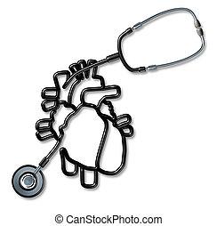 corazón, estetoscopio, humano