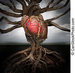 corazón humano, salud, concepto