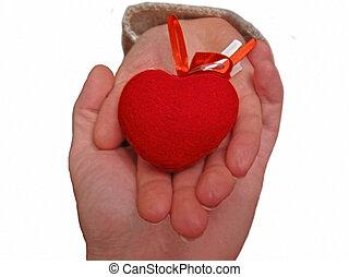 corazón, mujer, ayuda, mano, Cubrir, Asimiento,  Valentine