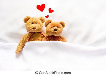 corazón, oso, teddy