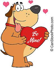 corazón, perro rojo, teniendo arriba