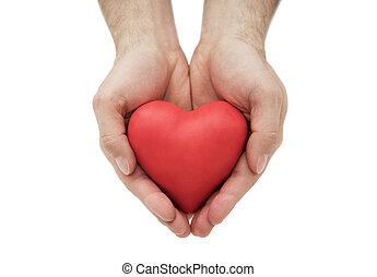 corazón rojo, en, hombre, hands., seguro médico, o, amor, concepto