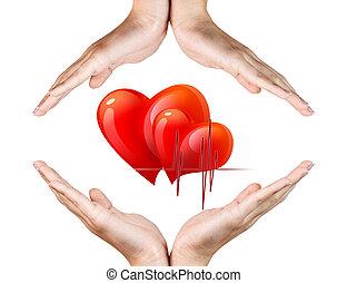 corazón rojo, en, mujer, manos
