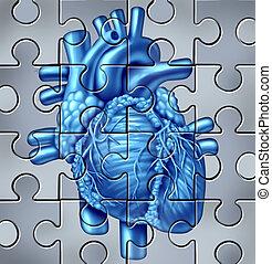 corazón, rompecabezas, humano