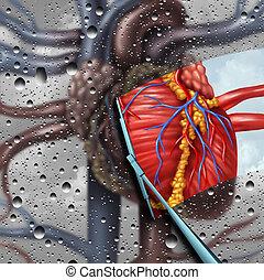 corazón, terapia, enfermedad, humano
