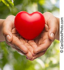 corazón, womans, actuación, manos ahuecadas, rojo