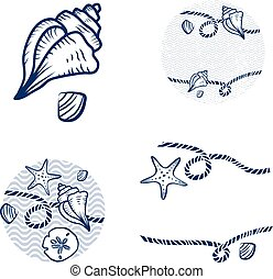 corda, concha, projeto fixo, mar
