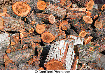 Corded wood (fireplace log pieces) on the ground