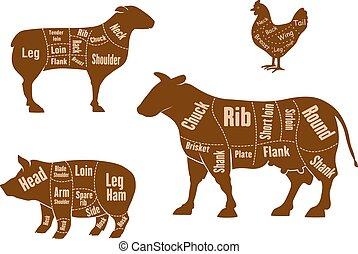 cordero, cerdo, carne, carne de vaca, pollo, cortes, esquema