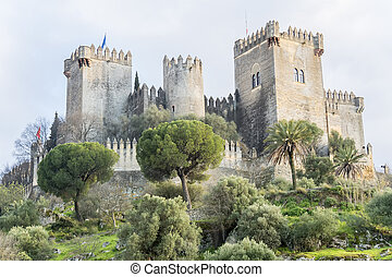 Cordoba,  almodovar,  Rio,  del, castelo, Espanha
