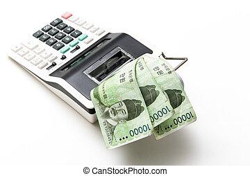 corea, soldi, calcolatore, fondo, effetti, venire, sud, fuori