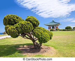 coreano, campana, de, amistad, pagoda, y, parque
