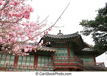 coreano, palacio