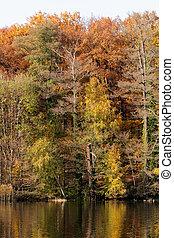 cores, alemanha, berlim, outono