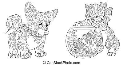 corgi, chien, chaton