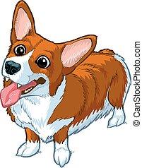 corgi, felice, vettore, cartone animato, cane