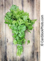 Coriander. - Fresh, organically grown coriander or cilantro...