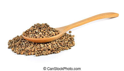 Coriander seed in the wood spoon on white background