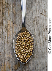 Coriander seeds (Coriandrum sativum) with Spoon full.