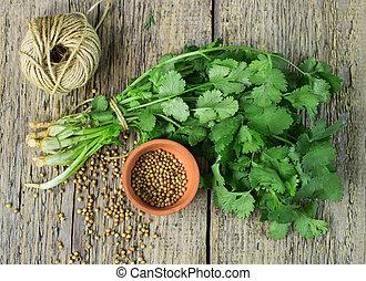 coriandolo, fresco, cilantro, semi, mazzo