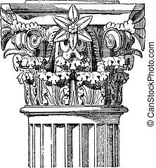 corinthian, capital, templo, de, vesta, vindima, engraving.