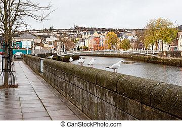 Cork City. Ireland - Lavitt's Quay on the north channel of...