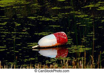 Cork Reflection