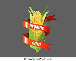 Corn 02