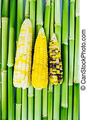 corn 3 color