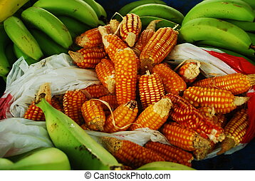 Corn and Plantains, Caribbean - Small cobs of popping corn...