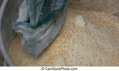 Corn bran or flakes in a special machine for grinding grain. Cornmeal or Shredded corn close up view