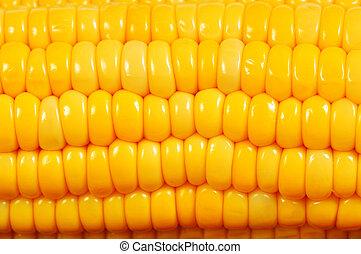 corn cob macro
