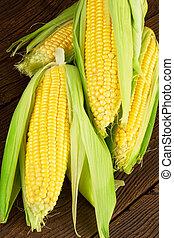 Corn Cob on Wooden Background
