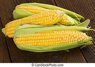 corn cob sweet maize