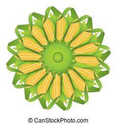 Corn cobs - Vector of corn cobs, corn kernels, green leaves