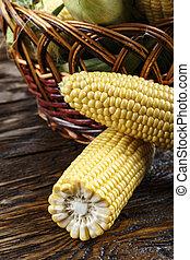 corn cobs close up