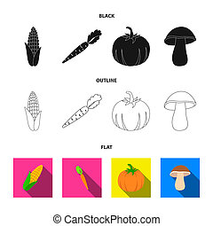 Corn corn, vitamin carrots with tops, pumpkin, forest mushroom. Vegetables set collection icons in black, flat, outline style bitmap symbol stock illustration web.