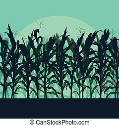 Corn field detailed countryside landscape illustration background vector in moonlight