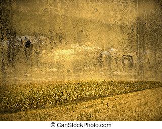corn field in vintage look