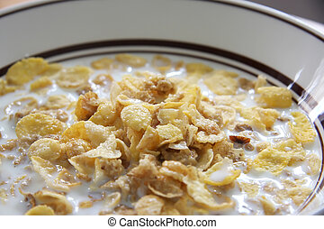 Corn flakes in milk