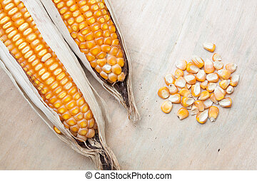 Corn grains