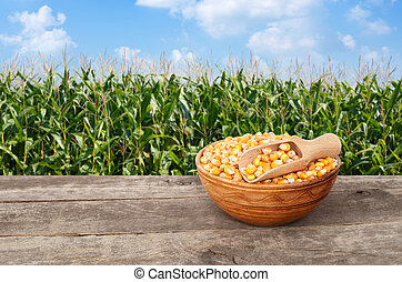 corn grains in bowl on table