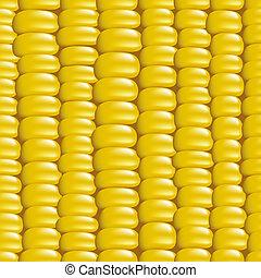 corn., illustration., seamless, ベクトル, 穀粒, 背景