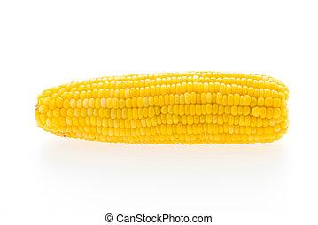 Corn isolated