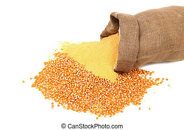 Corn meal and grain in bag isolated on a white background.